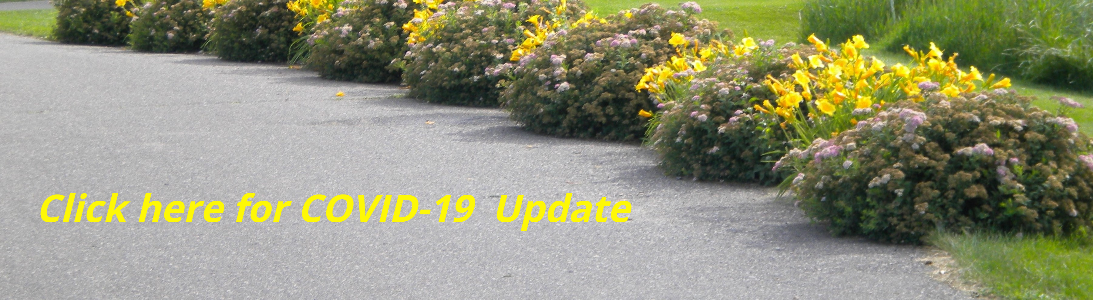 Click here for COVID-19 Update